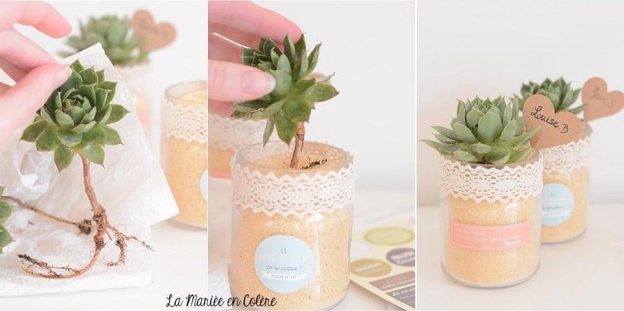 cadeau invités mariage plantes